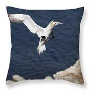 Gannet Landing Throw Pillow