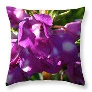 Garden Balsam Throw Pillow