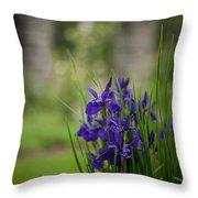 Garden Blue Irises Throw Pillow