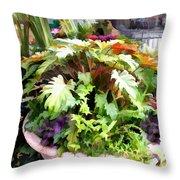 Garden Bowl Of Foliage Throw Pillow