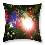 Garden Cover Throw Pillow