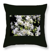Garden Fairies Throw Pillow