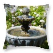 Garden Fountain Throw Pillow