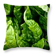 Garden Fresh Throw Pillow by Susan Herber
