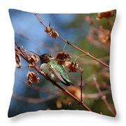 Garden Hummer Throw Pillow