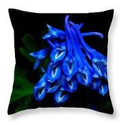 Garden Jewel Throw Pillow
