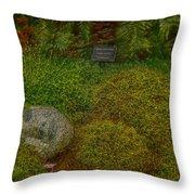 Garden Of Dreams Throw Pillow