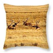 Garden Of Elk Throw Pillow