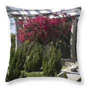 Garden Pergola Throw Pillow