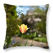 Garden Radiance Throw Pillow
