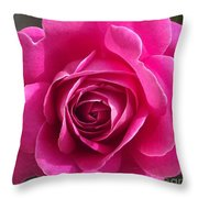 Garden Rose Throw Pillow