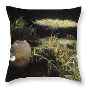 Garden Urns In A Garden Throw Pillow
