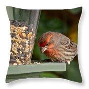 Garden Visitor Throw Pillow