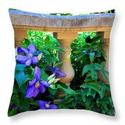 Garden Wall With Periwinkle Flowers Throw Pillow