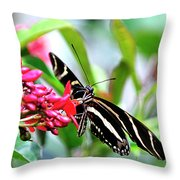 Garden Zebra Longwing Throw Pillow