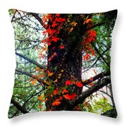 Garland Of Autumn Throw Pillow