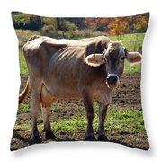 Gasping Cow Throw Pillow