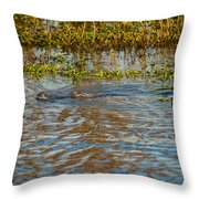 Gater On The Move Throw Pillow