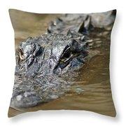 Gator 3 Throw Pillow