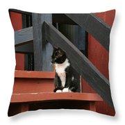 Gatto Bianco Gatto Nero Throw Pillow