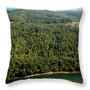 Gauley River Aerial View Throw Pillow