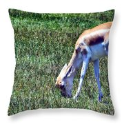 Gazelle Throw Pillow