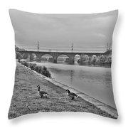 Geese Along The Schuylkill River Throw Pillow