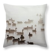 Geese And Ducks In A Placid Lake Throw Pillow