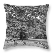 Geese By The River Throw Pillow by Bill Cannon