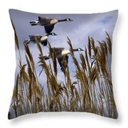 Geese Coming In For A Landing Throw Pillow