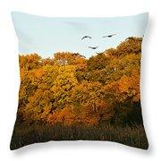Geese Flight Throw Pillow