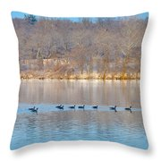 Geese In The Schuylkill River Throw Pillow