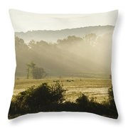 Geese Mist And Sun Throw Pillow