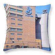General Mills Throw Pillow