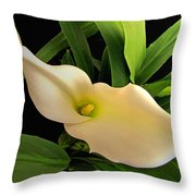Gentle Blush I Throw Pillow