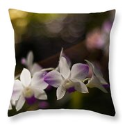 Gentle Light Throw Pillow