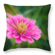 Gentle Reminder Throw Pillow
