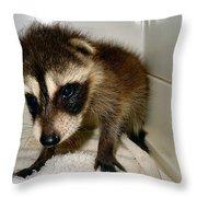 Gentleness  Throw Pillow
