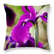 Gently Being Throw Pillow