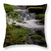 Gently Falling Throw Pillow
