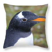 Gentoo Penguin Head Shot Throw Pillow