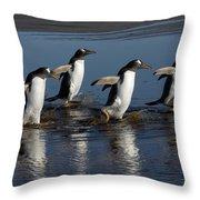 Gentoo Penguin Pygoscelis Papua Group Throw Pillow