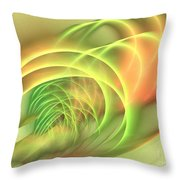 Geomagnetic Throw Pillow