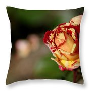 George Burns Rose Throw Pillow