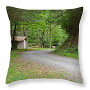 Georgia Mountain Road Throw Pillow