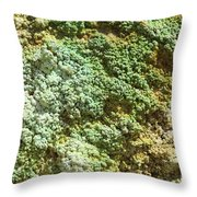 Geothermally Active Area Throw Pillow