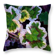 Geranium 6 Throw Pillow