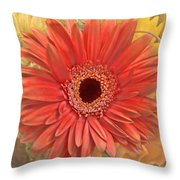 Gerber Delight Throw Pillow