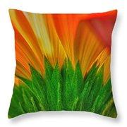 Gerbera Explosion Throw Pillow