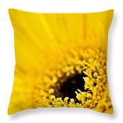 Gerbera Flower Throw Pillow